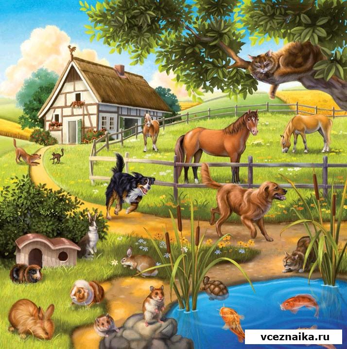 Рисунки с животными дома